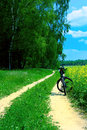 Bicycle in summer rural scene Royalty Free Stock Images