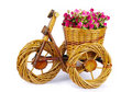 Bicycle vase with flowers Stock Image
