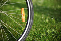 Bicycle wheel on green grass Royalty Free Stock Photo