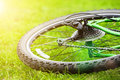 Bicycle wheel on green grass in sun light selective focus Stock Photo