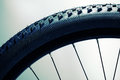 Bicycle wheel and tire Royalty Free Stock Photo