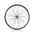 Bicycle wheel used with no tire on white background Royalty Free Stock Photos