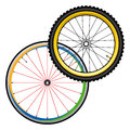 Bicycle wheels for road and mountain bike Royalty Free Stock Photo