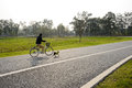 Bicycler and dog running on blacktop in grassy lawn of sunny win Royalty Free Stock Photo