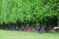 Bicycles parked in a garden Stock Photo