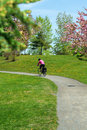 Bicycling in park. Stock Foto