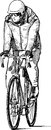 Bicyclist vector drawing of a man riding a bicycle Royalty Free Stock Images