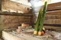 Bidayuh of sarawak borneo cooking utensil bamboo sticks over land dayak firewood kitchen it is used as kitchen utensils for rice Royalty Free Stock Image