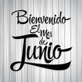 Bienvenido el mes de Junio - Welcome June spanish text