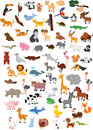 Big animal cartoon set Royalty Free Stock Photo