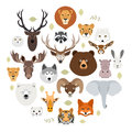 Big animal face icon set. Cartoon heads of fox, rhino, bear, raccoon, hare, lion, owl, rabbit, wolf, hippo, elephant