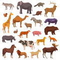 Big animals set wild domestic and farm decorative icons isolated vector illustration Royalty Free Stock Photos
