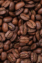 Big arabica coffee beans background directly fromm above for Royalty Free Stock Photo