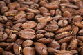 Big arabica coffee beans close up photo Royalty Free Stock Images