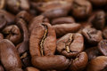 Big arabica coffee beans close up photo Stock Images