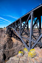 Big arch ferms metal trustworthy safe bridge over deep canyon Royalty Free Stock Photo