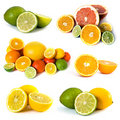 Big assortment of citrus Stock Image