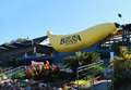 The big banana tourist attraction in coffs harbour pacific highway nsw australia featuring a large walk through where Stock Photo