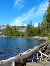 Big bear lake lakes basin area of the northern sierra nevada mountains Royalty Free Stock Photo