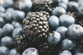 Big blackberry focus and blueberries Royalty Free Stock Photo