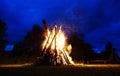 Big bonfire on the nighttime Stock Photography