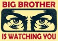 Big brother watching you spying eyes, surveillance and privacy concept vector illustration Royalty Free Stock Photo