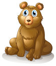A big brown bear illustration of on white background Stock Images