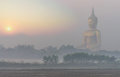 The big buddha at wat muang temple with fog and tree when sunrise angthong thailand Royalty Free Stock Photos