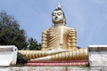 Big buddha in wewurukannala vihara sri lanka Royalty Free Stock Photo