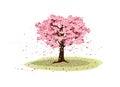 Big Cherry tree