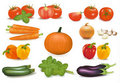 The big colorful collection of vegetables. Stock Photos