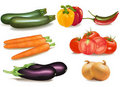 The big colorful group of ripe vegetables. Stock Photography
