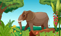 A big elephant in the jungle illustration of Stock Photography
