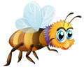 A big fat bee illustration of on white background Stock Images