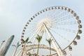 Big Ferris Wheel