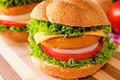 Big fishburger fresh and fried with vegetables Royalty Free Stock Image