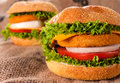 Big fishburgers selective on the front fishburger with vegetables Stock Image