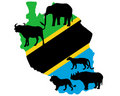Big Five Tanzania Royalty Free Stock Image