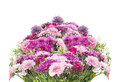 Big flower bouquet with pink summer flowers isolated on white Royalty Free Stock Image