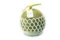 Big fresh Melon on white background Royalty Free Stock Photo