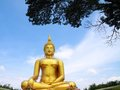 Big golden Buddha statue Stock Images