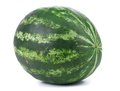 Big green water melon close up on a white background Stock Images