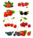 Big group of fresh berries Royalty Free Stock Image