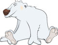 Big happy shaggy polar bear Stock Photos