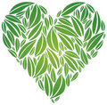 Big Heart made of Green Leaves Royalty Free Stock Images