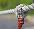 Big knot with sturdy rope to remember the commitments Stock Image