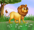 A big lion at the road illustration of Stock Photo