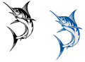 Big marlin fish Royalty Free Stock Photography