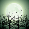 Big moon, trees and birds Royalty Free Stock Photos