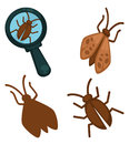 Big moth insects set and small one under magnifying glass Royalty Free Stock Photo